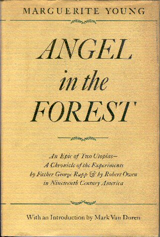 Image for Angel in the Forest
