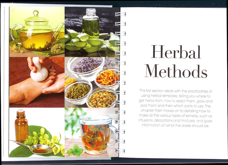 Image for The Herbal Healing Bible