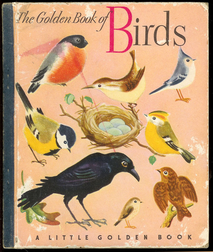 Image for The Golden Book of Birds