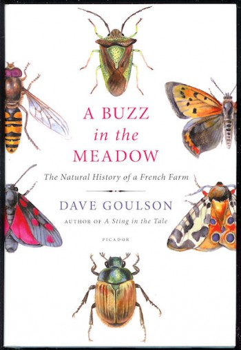 Image for A Buzz in the Meadow The Natural History of a French Farm